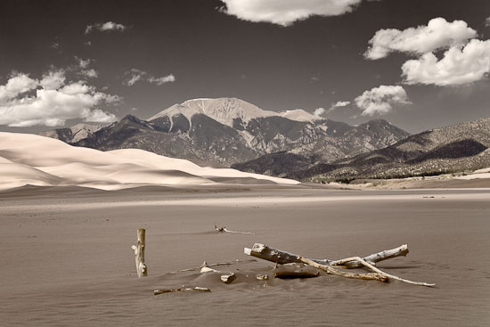 Driftwood on the Dunes, Great Sand Dunes NM, CO